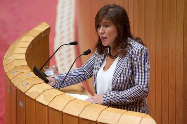 Beatriz Mato comparece en el pleno del Parlamento