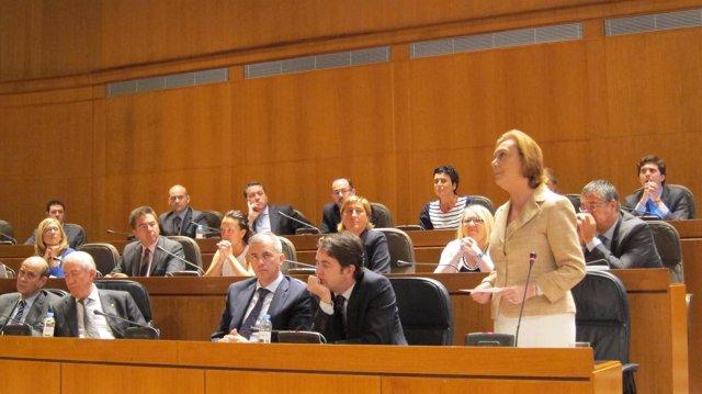 La presidenta Rudi en su intervención este viernes en el pleno