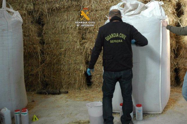Operación contra el tráfico de semillas
