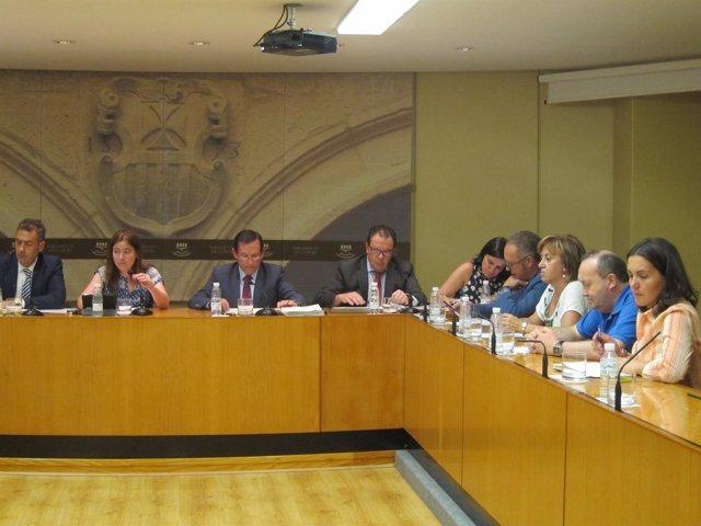 Comisión de Industria, Innovación y Empleo