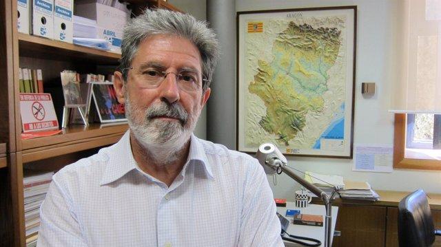 El diputado Adolfo Barrena