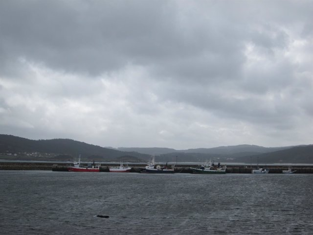 Flota gallega amarrada
