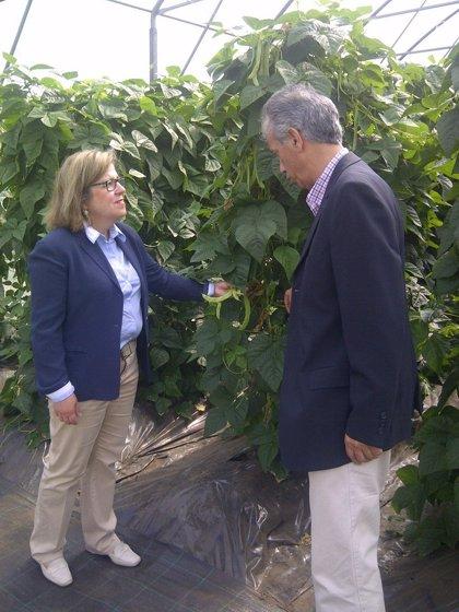 La Xunta fomenta la reinserción de jóvenes con actividades agropecuarias mediante el Proyecto Hombre