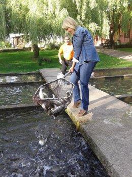 La consejera pescando salmón