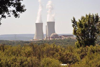 Concluye recarga de combustible y mantenimiento general en la central nuclear de Trillo