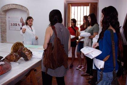 Comienza una nueva campaña de restauración de la Fundación Tarazona Monumental