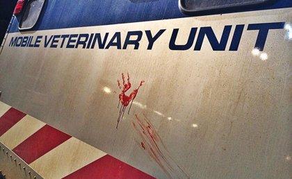 Jurassic World promete sangre en una nueva terrorífica imagen