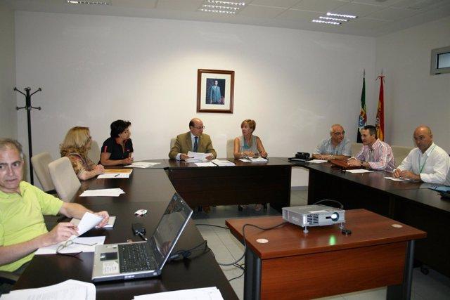 Consejo Asesor sobre Diabetes de Extremadura