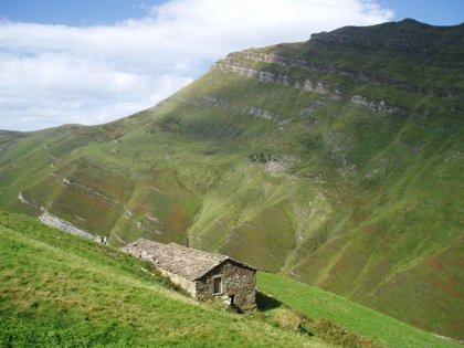La ganadería ecológica tiene un gran potencial de desarrollo en la Montaña Pasiega