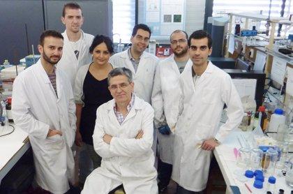 Obtienen bioplásticos a partir del cangrejo rojo del Guadalquivir