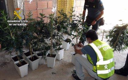 Guardia Civil aprehende 1.000 dosis de cocaína en tres operaciones y detiene a cinco personas