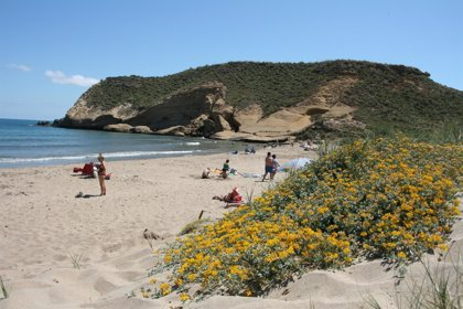 La bandera verde ondea en todos los puestos de vigilancia en playas de la Región