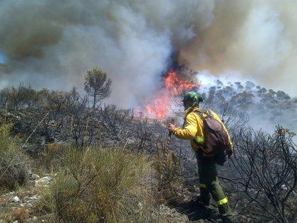 La Junta comienza a investigar las causas del fuego en Cómpeta tras declararlo controlado