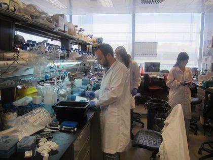 Jóvenes científicos amateurs exponen sus proyectos en un congreso internacional