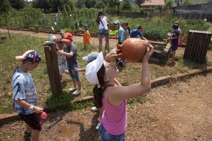 Un total de 6.614 niños participan en las 304 actividades de la Escuela de Medio Ambiente