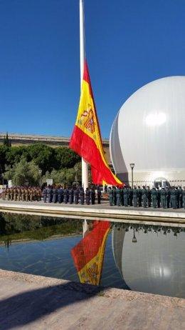 Izado de la bandera de España en el Día de las Fuerzas Armadas