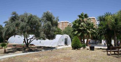 La asociación Ecohuerto El Rabanito pondrá en marcha un vivero y un aula de formación en La Noria