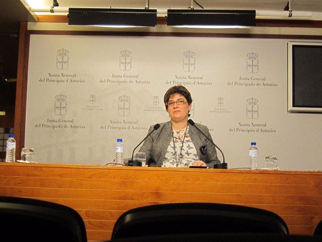 Marta Pulgar, diputada de IU en la JGPA