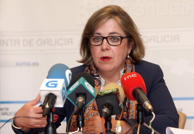 La directora xeral de Produción Agropecuaria, Patricia Ulloa