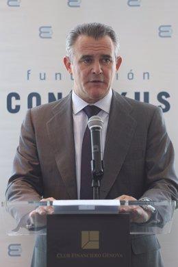Javier Serratosa, Fundación Conexus
