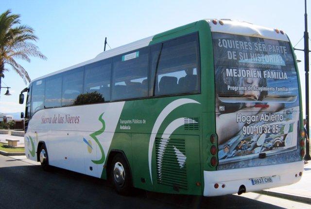 Autobús interurbano Grupo Paco Pepe movilidad transporte