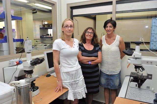 Miembros del grupo de investigación de la Universidad Politécnica de Valencia