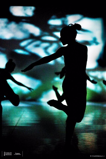 Sector de la danza propone un nuevo Dansa València con un equipo directivo elegido por convocatoria pública