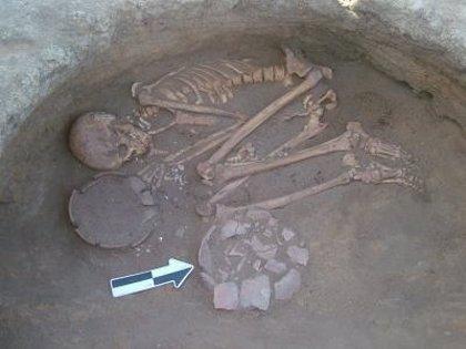 El hombre prehistórico conocía las propiedades nutricionales de las plantas antes de desarrollarse la agricultura