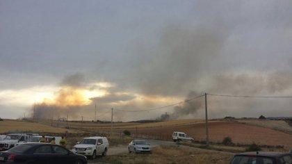 Medios aéreos vuelven a los incendios de Cogolludo y Bustares