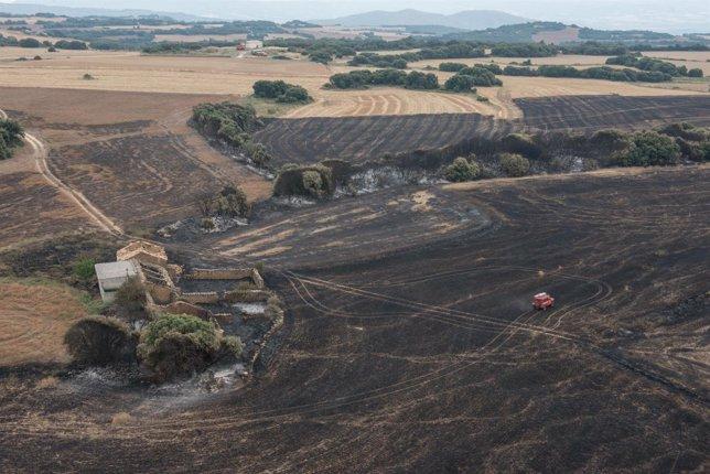 Vista aérea de la zona afectada por el fuego