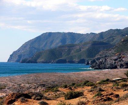La bandera amarilla ondea en cuatro playas de la Región