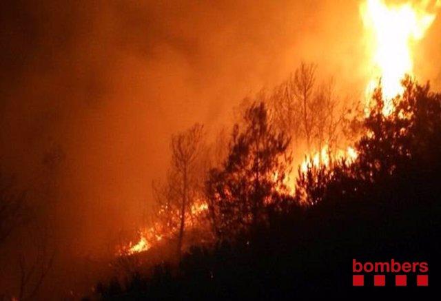 Incendio causado por un rayo en Flix (Tarragona)