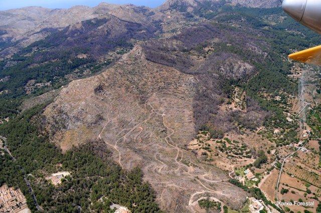 Actuaciones realizadas en la zona del incendio de la Serra de Tramuntana