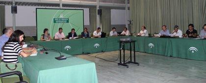 La Mesa de los Cítricos de Andalucía analiza la estrategia de protección de Junta y Ministerio contra la 'mancha negra'