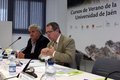 El presidente del Consejo Consultivo abre el tercer y último de los IX Cursos Universitarios de Verano de Torres