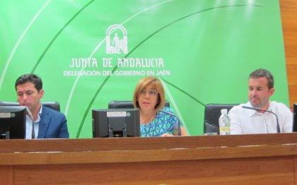 """La Comisión Territorial de Urbanismo informa favorablemente """"de forma parcial"""" el PGOU de Jaén"""