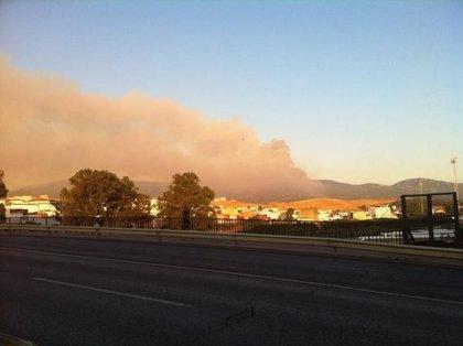 Infoca da por estabilizado el incendio forestal en Algeciras