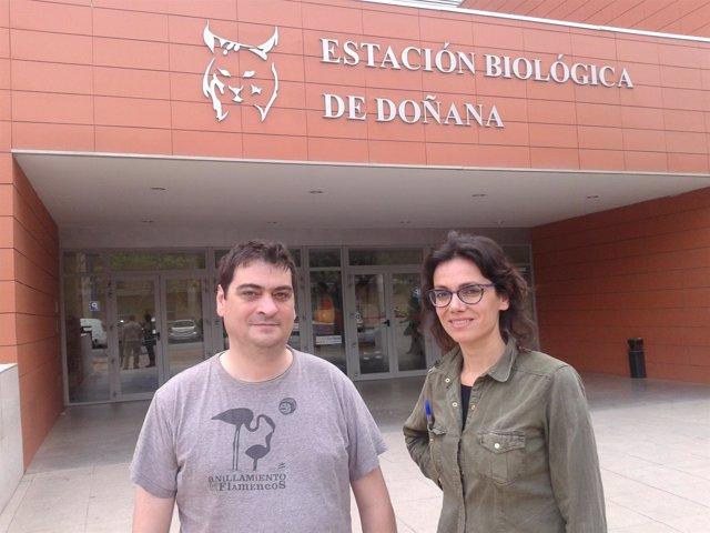 Jordi Figuerola y Rocío Márquez