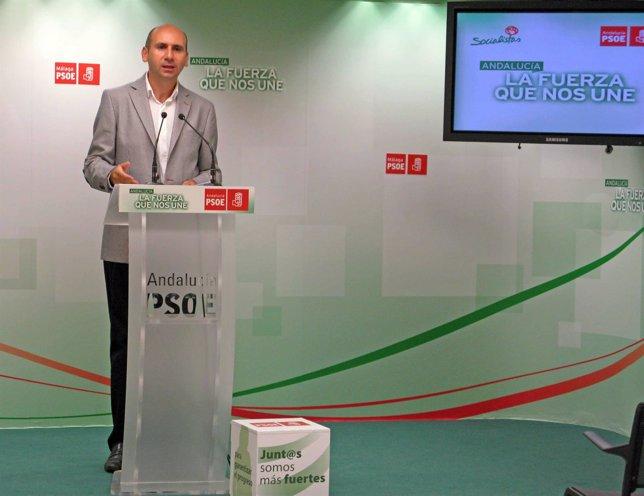 Conejo en la rueda de prensa del PSOE