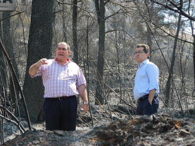 Montalvá y Collado visitan la zona afectada por el incendio