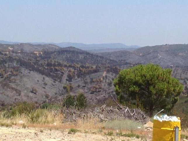 Imagen de la zona afectada por el incendio de Almonaster