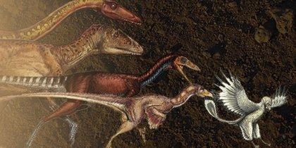 Dinosaurios encogidos evolucionaron como aves voladoras