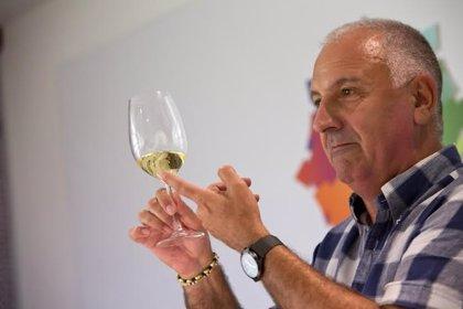 Pamplona acogerá catas con degustaciones de vinos y quesos DO Navarra