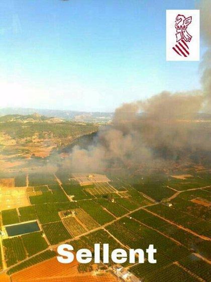 Declarado un incendio en Sellent (Valencia) que afecta a cañar