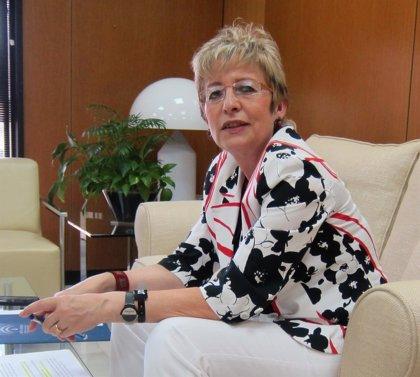 Víboras destaca los controles periódicos en Dasy y señala que el expediente abierto no es sobre un alto cargo de Junta