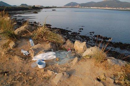 Voluntarios de PROVOCA y SEO/BirdLife retirarán este domingo sedales en las Marismas de Santoña