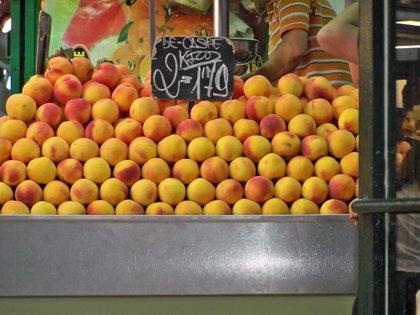 Melocotones y nectarinas lideran la producción de frutales estimada para 2014 con cerca de 165.000 toneladas