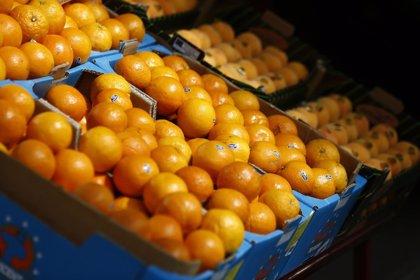 Lavar la fruta y la verdura y no romper la cadena de frío de los alimentos para evitar intoxicaciones