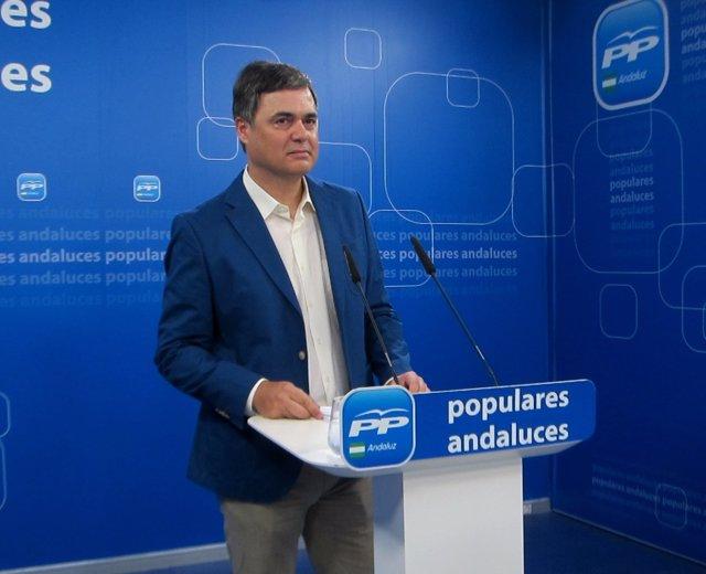 El portavoz del PP-A en el Parlamento, Carlos Rojas, en rueda de prensa