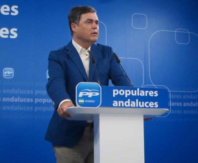 Carlos Rojas en rueda de prensa en el PP-A